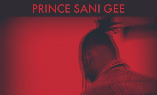 NNF Lyrics BY Prince Sani Gee