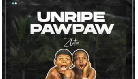 Unripe Pawpaw Lyrics BY Zlatan