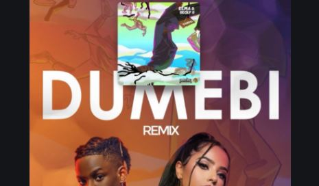Dumebi Remix Lyrics