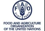 Recruitment 2020: FAO